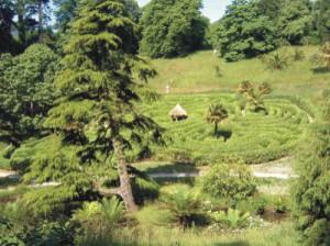 pic1-Glendurgan