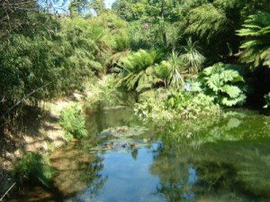 pic3-Heligan